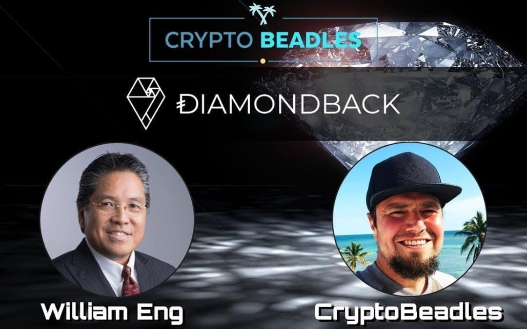 ⎮ Diamondback Holdings ⎮ Stable Cryptocurrency based on Diamonds? ⎮